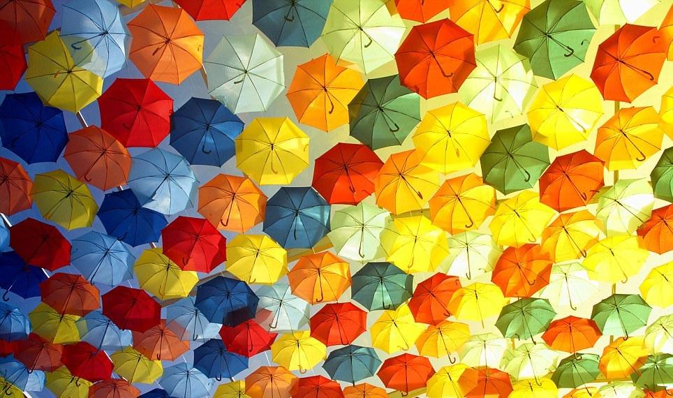 подбираем зонт